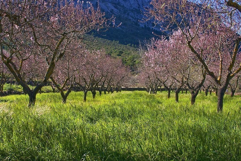 Agriturismo Natuur