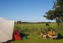 Oerol camping de Kooi