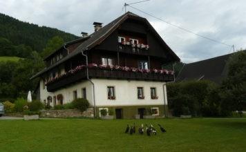 Camping Gauglerhof