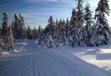 Wintersportongevallen