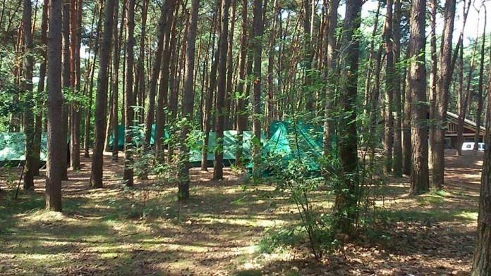 Stichting spelend kamperen
