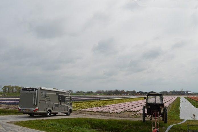 Nederlandse camperaars