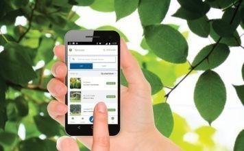 Kamperen App