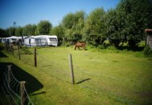 Camping Zonnehoeve