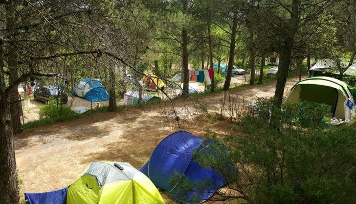 Camping Viver