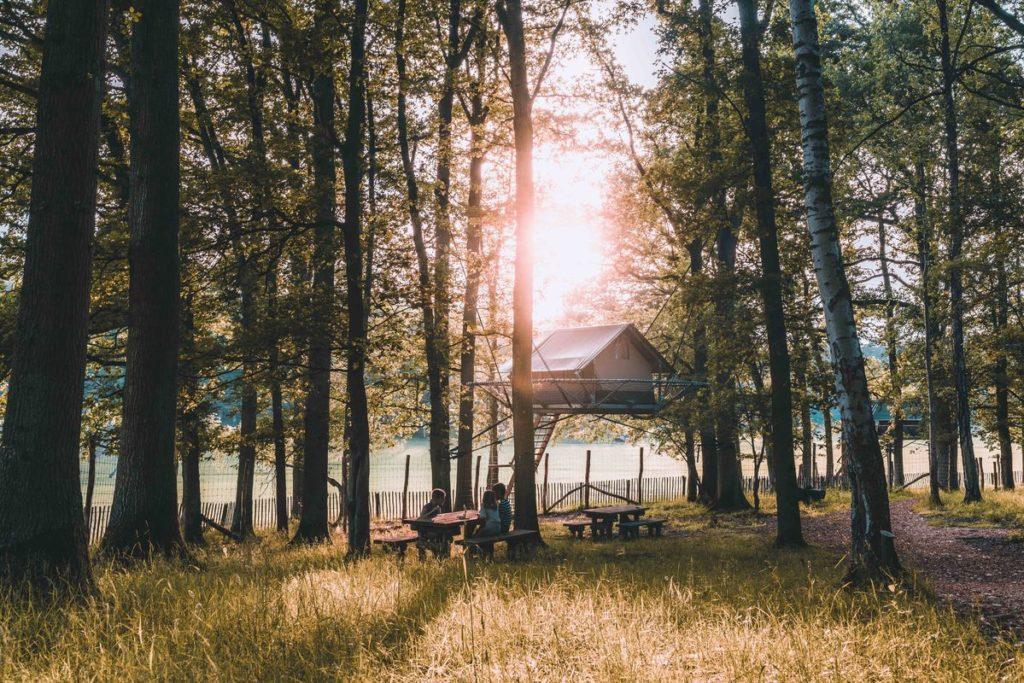 Slapen in de bomen Nieuw op het Domein! Breng de nacht door in de bomen, in het hart van het Wildpark. Ontdek onze Tree Tents, gezellige tenten in de hoogte gespannen tussen de bomen, met uitzicht op de prachtige droge vallei van de Lesse. Geniet van de dieren die in de open vlakte ronddartelen: herten, moeflons, oerossen, Przewalskipaarden, damherten... Een onvergetelijke nacht staat je te wachten!