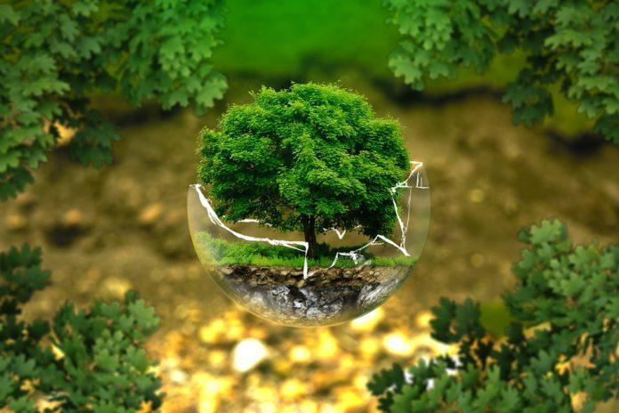 Milieuzones