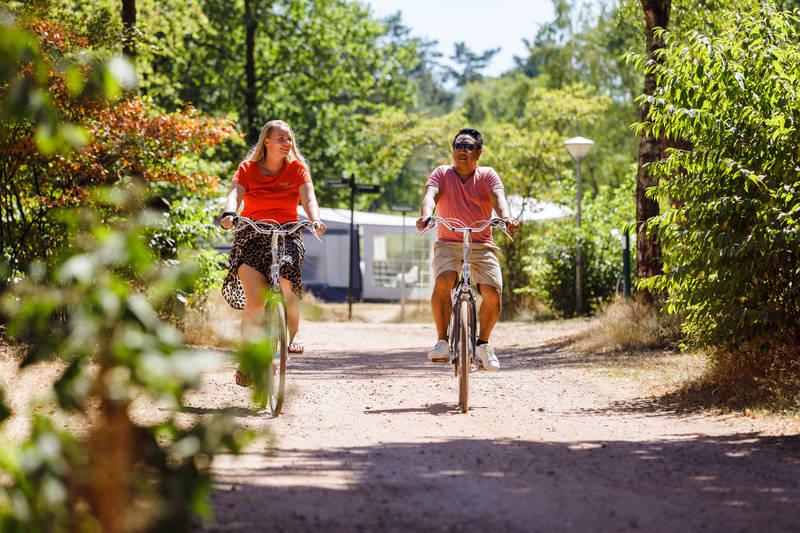 RCN-vakantiepark-de-Noordster-fietsen