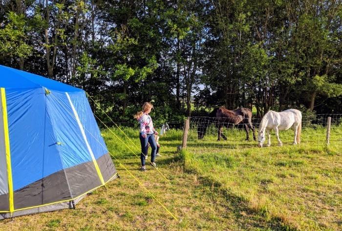 Boerderij camping