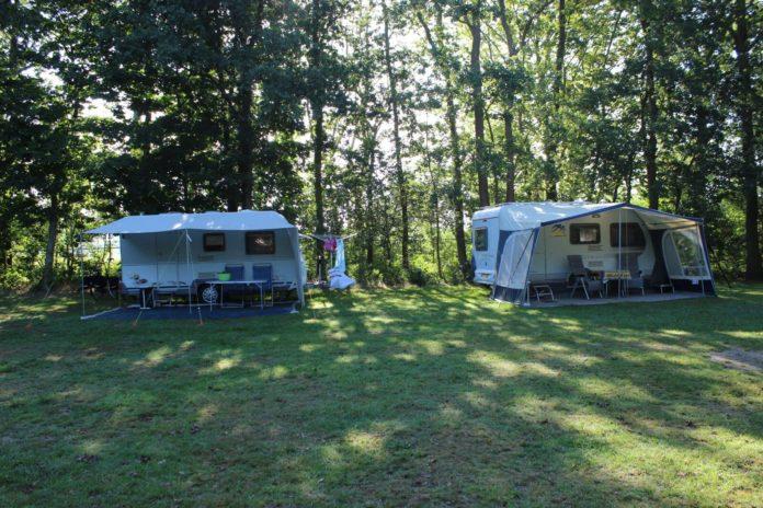 Camping Vogelenzang verscholen in het groen