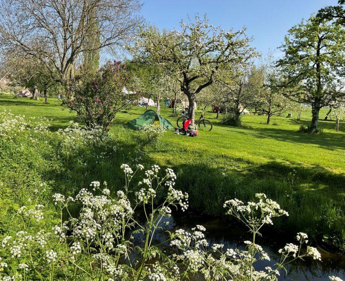 Natuurkampeerterrein de Oude Boomgaard in rustieke omgeving