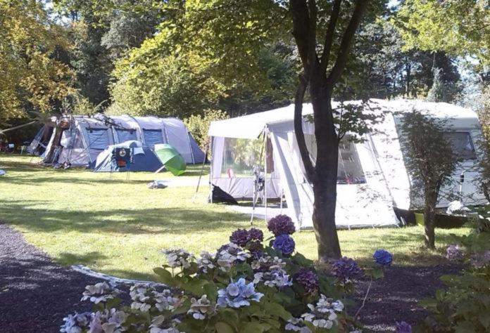Camping Zwinderen gelegen in de Drentse bossen