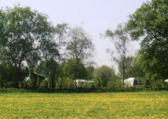 Landschapscamping De Graspol gelegen aan het natuurschone Dommeldal